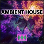 "Compilation ""The Original Ambient House Experience"""